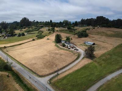 WATSONVILLE Single Family Home For Sale: 388 Larkin Valley Rd