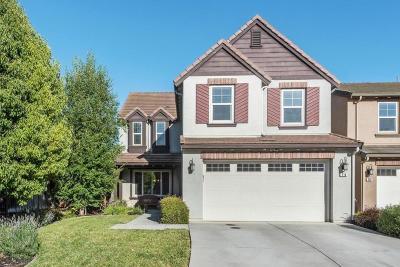 MORGAN HILL Single Family Home For Sale: 210 Coriander Ave