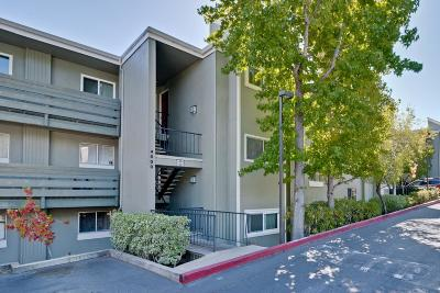 REDWOOD CITY Condo For Sale: 4000 Farm Hill Blvd 305