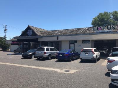 Stockton Commercial/Industrial For Sale: 1412 Rosemarie Ln