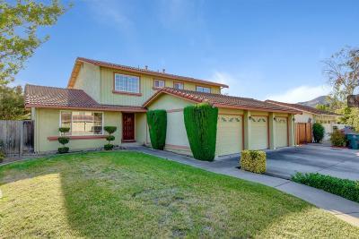 Morgan Hill Single Family Home For Sale: 15885 La Prenda Ct