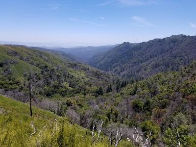 Los Gatos Residential Lots & Land For Sale: 35500 Loma Chiquita Rd