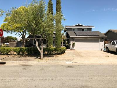 Gilroy, Morgan Hill Single Family Home For Sale: 8384 Gaunt Ave