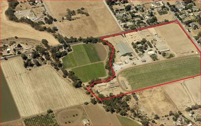 Gilroy, Morgan Hill Single Family Home For Sale: 1290 Masten Ave