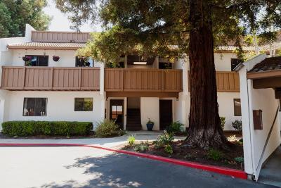 Santa Clara County Condo For Sale: 2201 Monroe St 1204