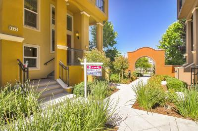 MILPITAS Townhouse For Sale: 1772 Lee Way