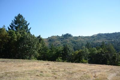 Los Gatos Residential Lots & Land For Sale: 25425 Radonich Rd