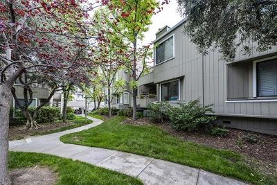 Santa Clara County Condo For Sale: 1744 Braddock Ct