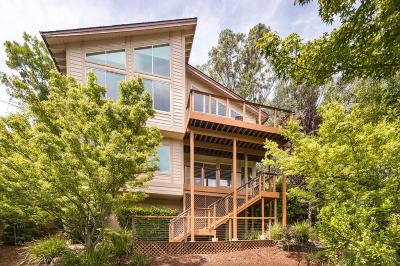 Redwood City Single Family Home For Sale: 356 Summit Dr