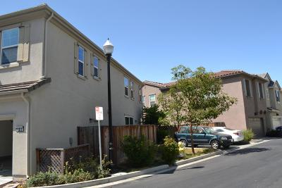 Milpitas Single Family Home For Sale: 163 Cobblestone Loop