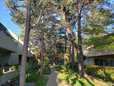 San Jose Condo For Sale: 283 Tradewinds Dr 8
