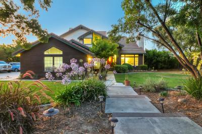 HOLLISTER Single Family Home For Sale: 441 Tierra Del Sol