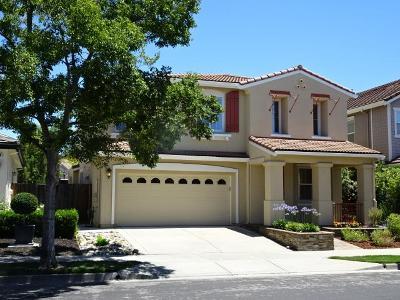 San Ramon Single Family Home For Sale: 2918 Langhorne Dr