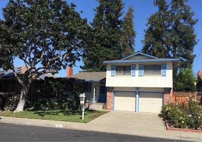 SANTA CLARA Single Family Home For Sale: 917 Perreira Dr