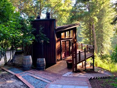 APTOS Single Family Home For Sale: 910 Cathedral Dr