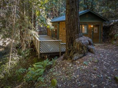 Santa Cruz County Single Family Home For Sale: 672 Swanton Rd