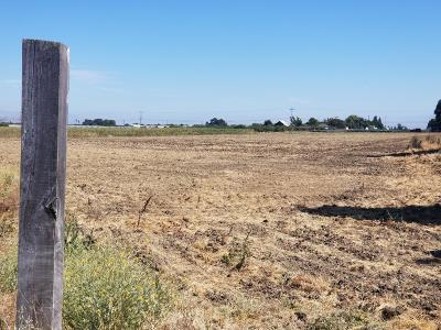Gilroy Residential Lots & Land For Sale: 910 Denio Ave