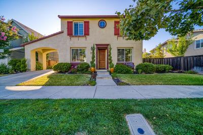 San Ramon Single Family Home For Sale: 1137 Chancery Way