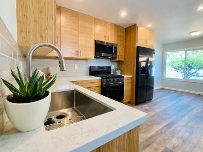 SAN JOSE Single Family Home For Sale: 585 Novak Dr