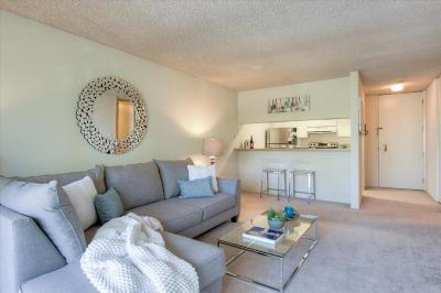 SAN BRUNO CA Condo For Sale: $519,888