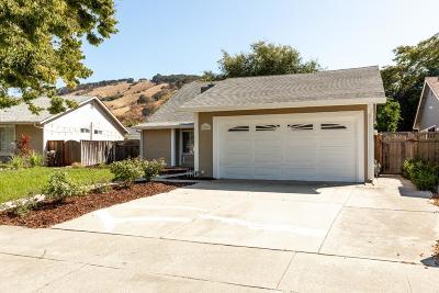 SAN JOSE Single Family Home For Sale: 6281 Mahan Dr