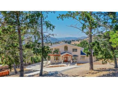 Santa Cruz County, Monterey County Single Family Home For Sale: 380 El Caminito Rd