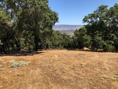 Gilroy Residential Lots & Land For Sale: 2204 Banyon Ct