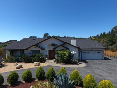 Santa Cruz County Single Family Home For Sale: 1103 Old San Jose Rd