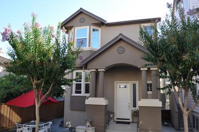 Santa Clara County Single Family Home For Sale: 1618 Salamoni Ct
