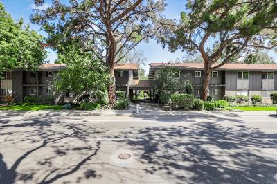 MOUNTAIN VIEW CA Condo For Sale: $625,000