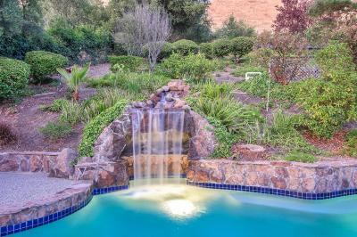 Fremont Single Family Home For Sale: 40400 Canyon Heights Dr