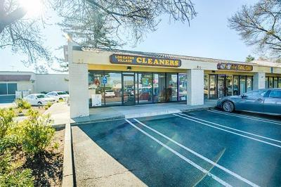 Santa Clara County Business Opportunity For Sale: 1510 Pollard Rd