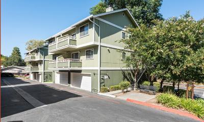 Santa Clara County Townhouse For Sale: 798 Apple Ter