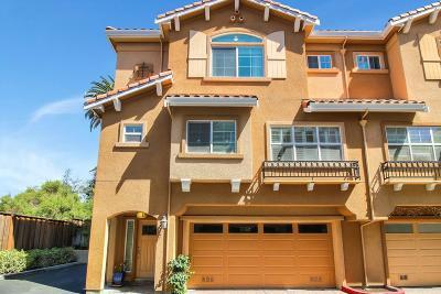 Santa Clara County Townhouse For Sale: 517 Richie Pl