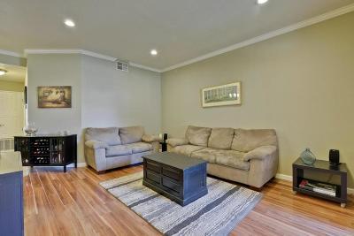San Jose Rental For Rent: 569 Shadow Dance Dr