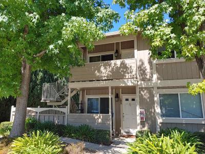 SAN JOSE Condo For Sale: 4970 Cherry Ave 201