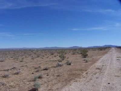 Residential Lots & Land For Sale: 064-370-06 Tumbleweed St