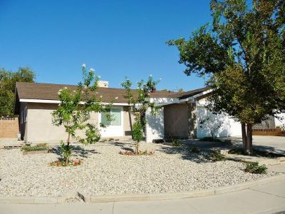 Inyo County, Kern County, Tulare County Single Family Home For Sale: 313 Dawn Ct