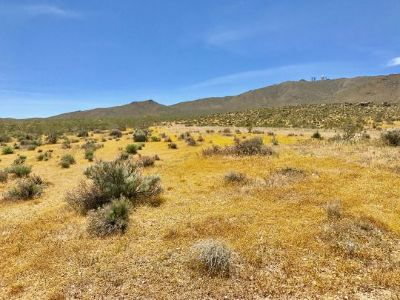 Inyo County, Kern County, Tulare County Residential Lots & Land For Sale: Highway 395 - 097-180-39