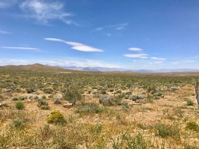 Inyo County, Kern County, Tulare County Residential Lots & Land For Sale: Highway 395-097-180-36 & 37