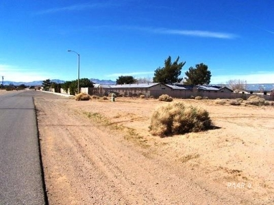 Inyo County, Kern County, Tulare County Residential Lots & Land For Sale: 343-351-13 Dolphin Ave