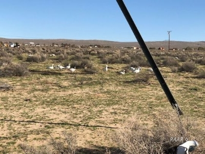 Inyo County, Kern County, Tulare County Residential Lots & Land For Sale: 1053 E Bowman Rd