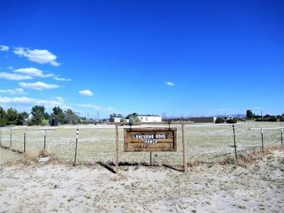 Inyokern Single Family Home For Sale: 4574 N Mesquite St