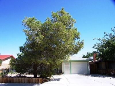 Inyo County, Kern County, Tulare County Single Family Home For Sale: 1226 W Vulcan Ave