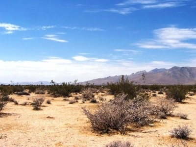 Inyo County, Kern County, Tulare County Residential Lots & Land For Sale: 056-301-03 N Brown Rd