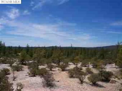 Nevada City CA Residential Lots & Land For Sale: $2,229,000
