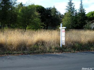 Cameron Park Residential Lots & Land For Sale: 3262 Western Drive