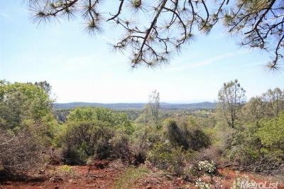 Nevada County Commercial Lots & Land For Sale: 15615 Siskiyou Court