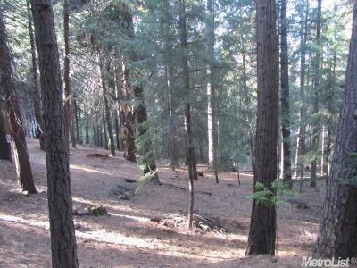 Pollock Pines Residential Lots & Land For Sale: 5741 Lupin Lane