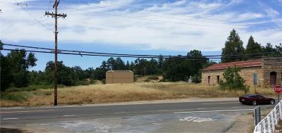 Diamond Springs Commercial Lots & Land For Sale: Georges Lane